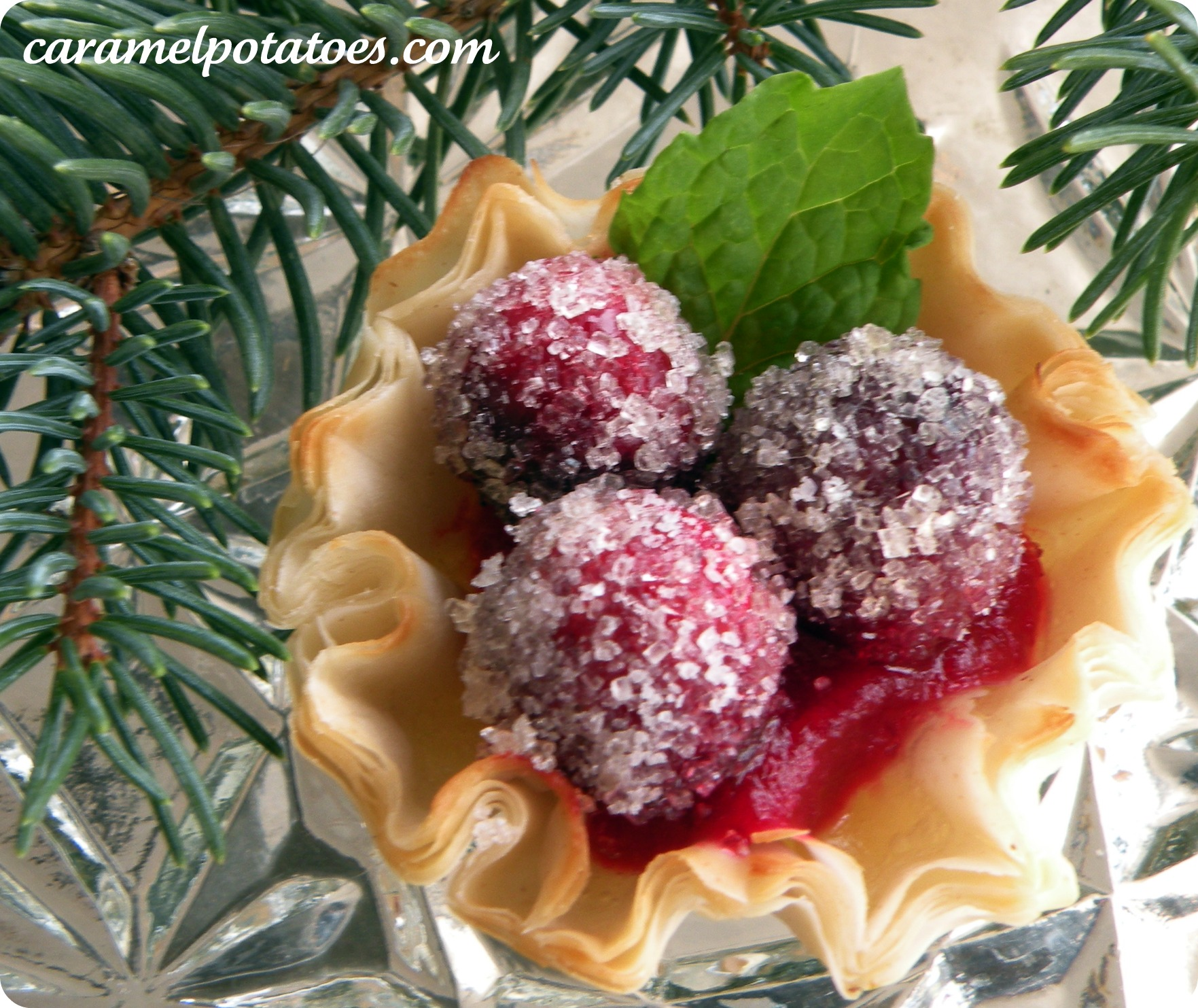 Sparkling Cranberry Cups