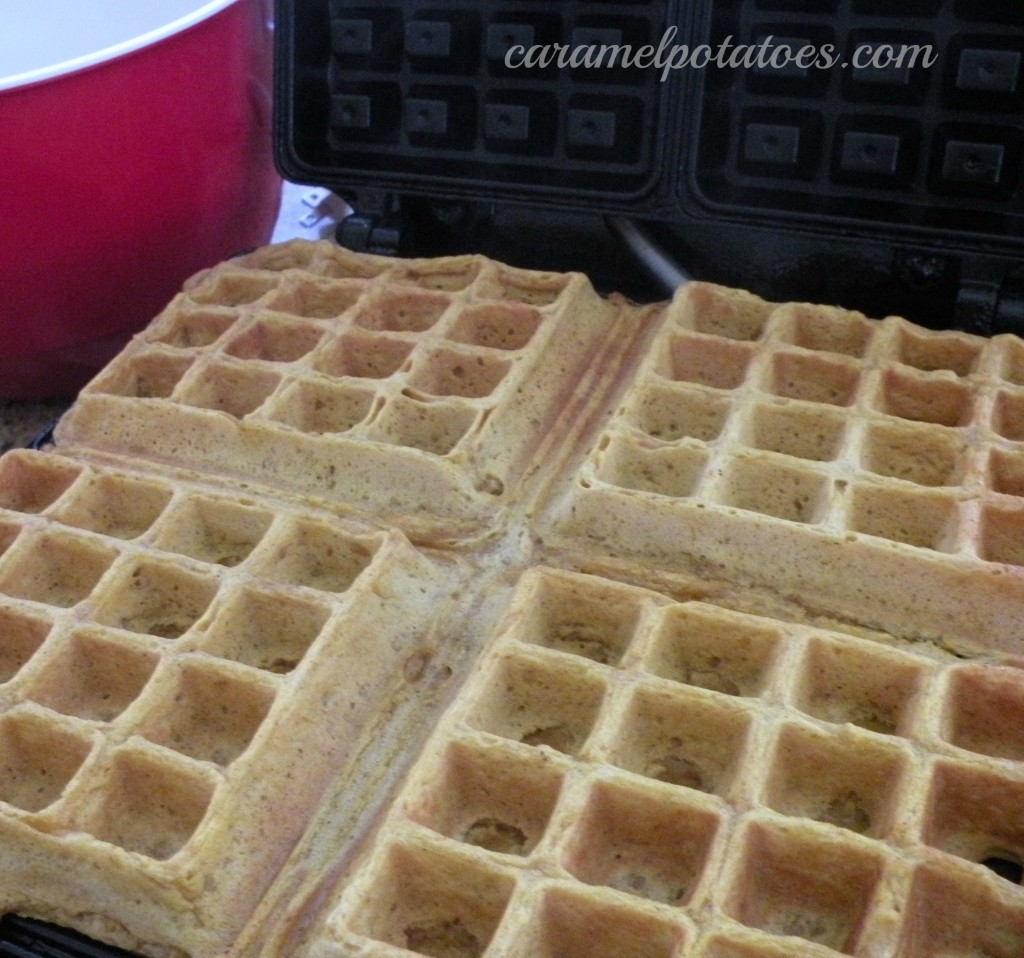 Caramel Potatoes » Pumpkin Waffles with Apple Cider Syrup