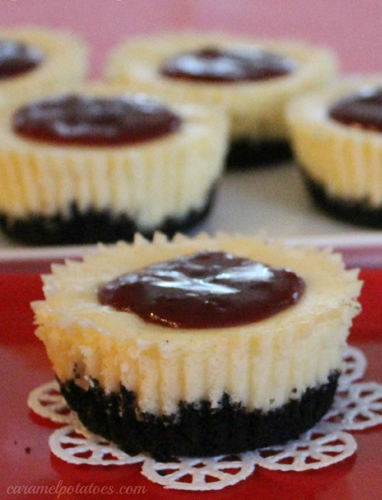 mini black bottom cheesecakes