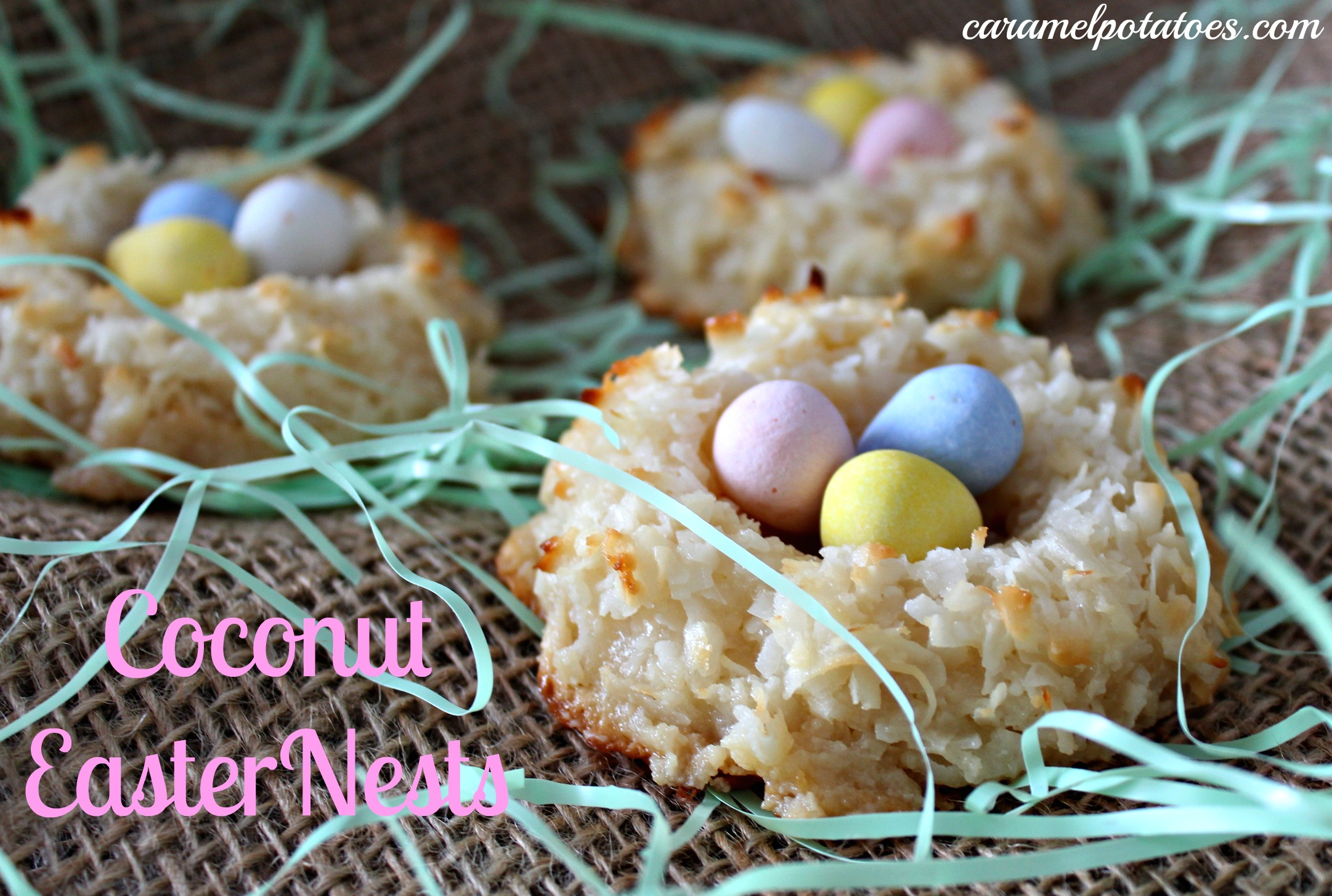 Coconut And Chocolate Nests Recipes — Dishmaps
